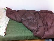 20色カバーリングマットレスベッド