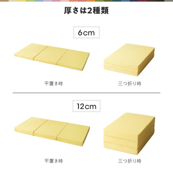 6cm・12cmの二種類